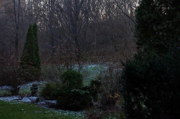 Fin-novembre 2015 Première neige