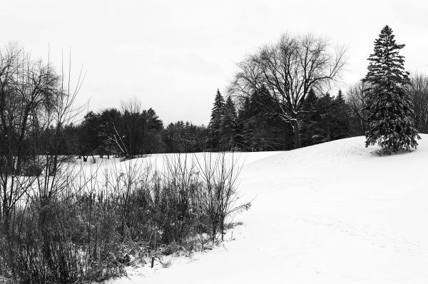 Amorce de l'hiver
