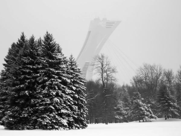 Montréal l'hiver en nb
