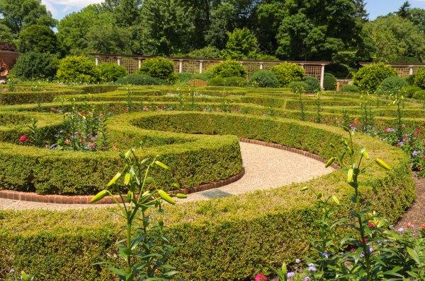 Le jardin de buis