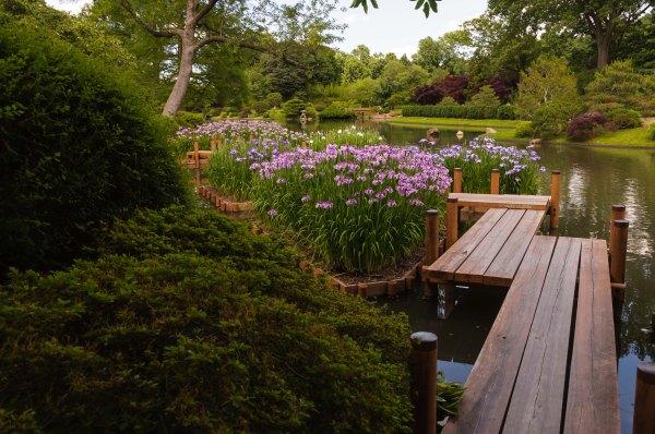 Le jardin japonais, immense, dans tous les sens du terme...