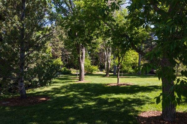 Jardin botanique de Cheyenne - Clairière