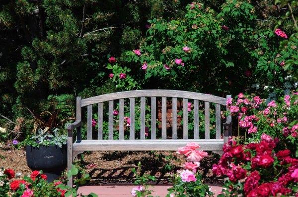 Jardin botanique de Cheyenne - La Roseraie