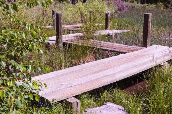 Jardin botanique de Cheyenne - L'étang