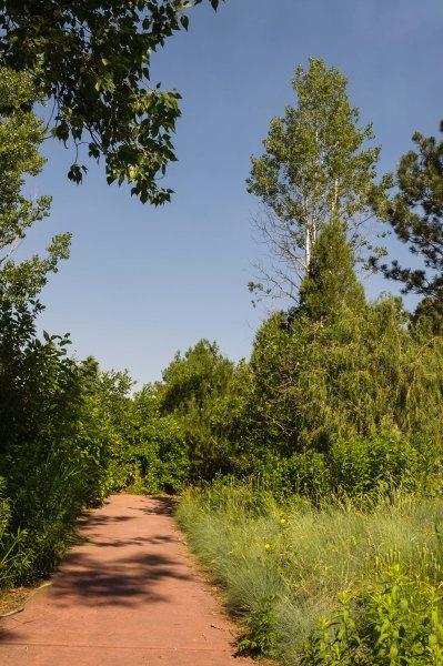 Jardin botanique de Cheyenne - Sentier