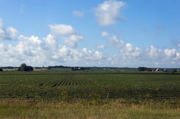 paysage-de-lillinois